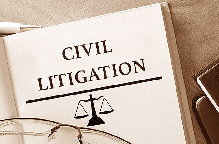 civil litigation essay
